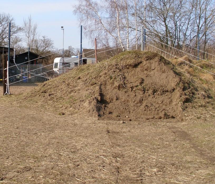 Fruehling 2011 bei - Locher im garten ohne erdhaufen ...